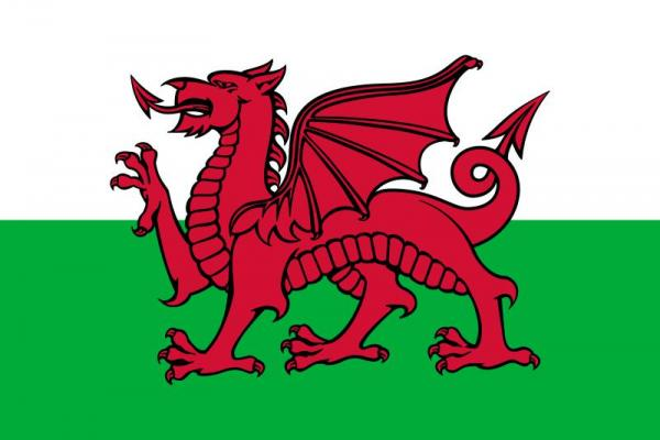 The Welsh flag consists of the Red Dragon of Cadwaladr, and the Tudor colors: green and white (the Tudors were the Welsh descendant kings of England). The dragon has long been a symbol of the Welsh, and has been both associated with Arthurian Legend and perhaps Roman-Britain unity.