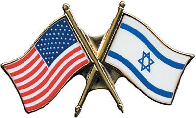 U.S. - Israelie flag pin